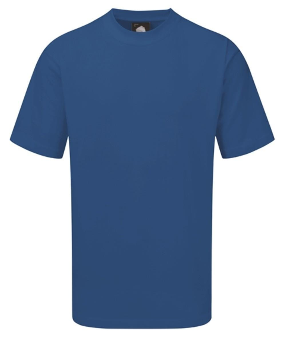 Orn Plover Premium T-Shirt - Bright Blue 5XL
